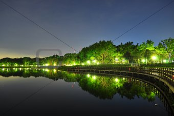 Bedok Reservoir with trees by night