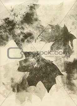 autumn leaves sepia collage background