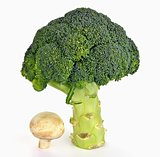 Broccoli and mushroom