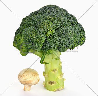 Broccoli and mushroom