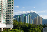 Apartment Blocks in Hong Kong