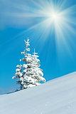 Snowy sunshine landscape
