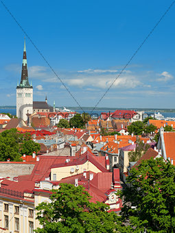 Old City of Tallinn in the morning