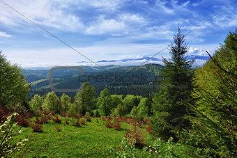 Beautiful mountain landscape - Carpathians