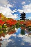 Toji Pagoda in Kyoto, Japan
