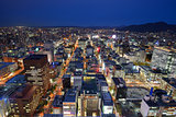 Downtown Sapporo Cityscape