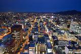 Downtown Sapporo Cityscape