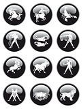 zodiac sign button