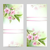 Set of spring banners with blossoming tree branch with pink flowers.