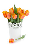 Orange tulips in flowerpot