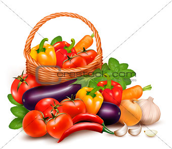 Background with fresh vegetables in basket. Healthy Food. Vector