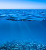 still calm sea water surface with clear sky  and underwater worl