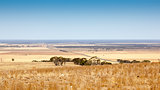 south australia