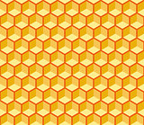 Seamless Hexagonal Cells Vector Texture