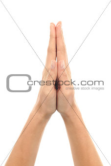 Woman hands in praying gesture
