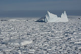Iceberg in the Southern Ocean - 3.