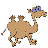 Camel Cartoon Vector Illustration