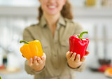 Closeup on bell pepper in hand of housewife in kitchen