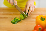 Closeup on housewife cutting cucumber