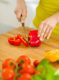 Closeup on housewife cutting red bell pepper on cutting board