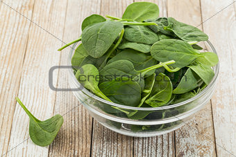 bowl of baby spinach