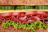 Closeup of a sandwich with salami