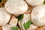 Closeup of tasty fresh white mushrooms in a basket