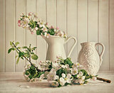 Still life of apple blossom flowers in vase