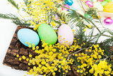 Arrangement With Easter Eggs And Mimosa