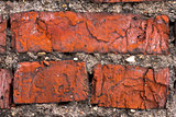 three Bricks in old Wall