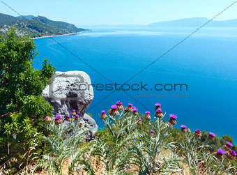 Summer  sea coastline view (Croatia)