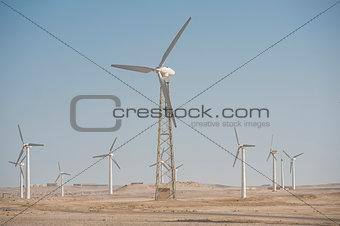 Electric wind turbine generators