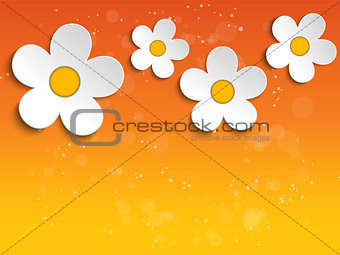 Beautiful Spring White Flowers Background