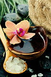 spa composition with beautiful orchid