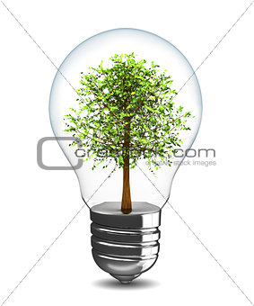 tree in light bulb