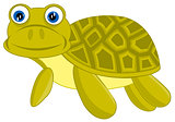 Cartoon of the terrapin on white background
