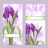 Set of spring banners with Purple Iris Flowers on bokeh background.