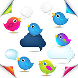 Color Birds Set With Corners And Speech Bubble