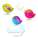 Color Birds Set With Speech Bubble