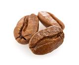 coffee seed (macro)