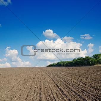 black plowed field under blue sky