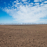 black plowed field under deep blue sky