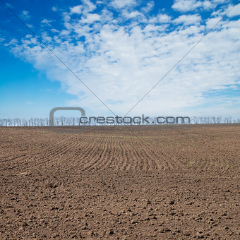 black plowed field under deep blue sky