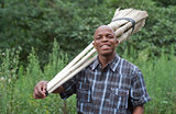 Stock photograph of smiling South African entrepreneur small business broom salesman