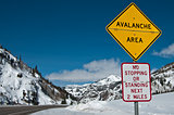 Avalanche Area Sign