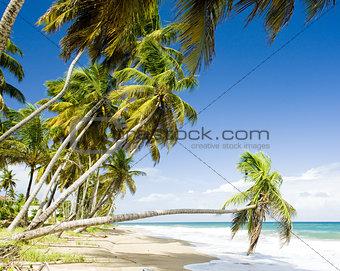 Sauteurs Bay, Grenada
