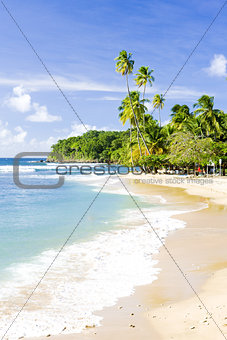 Mount Irvine Bay, Tobago
