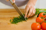 Closeup on housewife cutting fresh dill