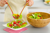 Closeup on woman served plate with fresh vegetable salad