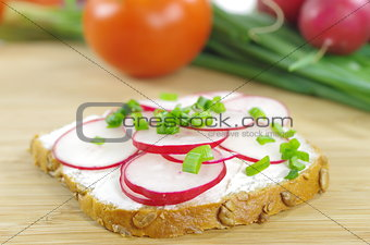 slice of bread with cottage cheese and the vegetables